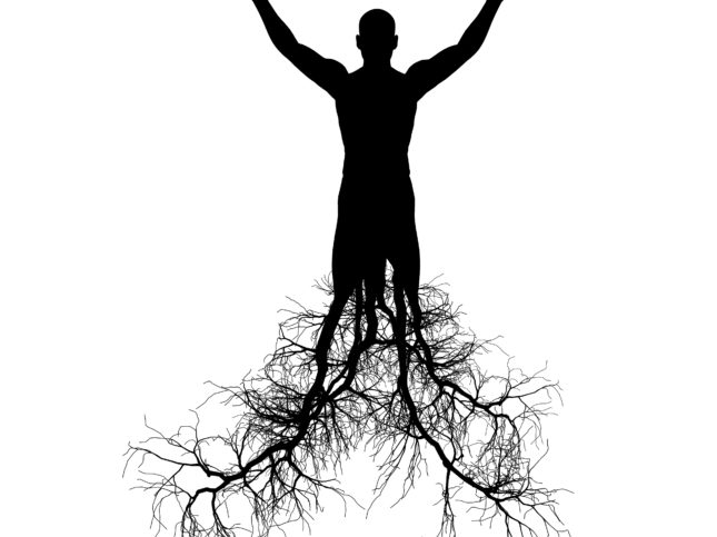The man with tree roots. It is isolated on a white background.